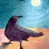 aceo-crow4-web