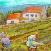 aceo-tuscanharvest-websize